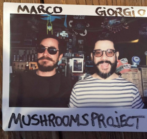 Mushrooms Project (LENG)